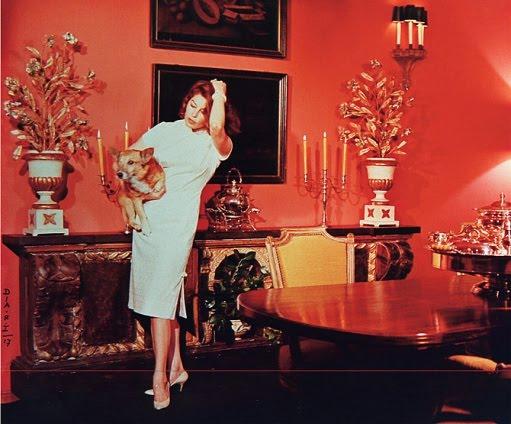Ava Gardner Gallery - ...