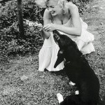 Marilyn plays with her dog Hugo in 1957 he stayed with Arthur after the divorce